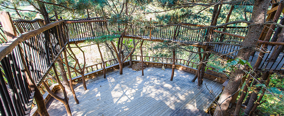 treehouse-05